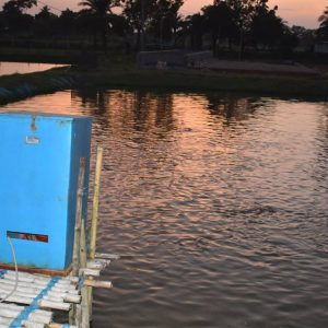Automatic Fish Feeder – Made by Bangladesh